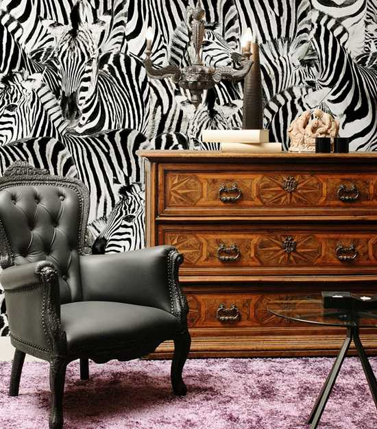 Обои зебра в интерьере