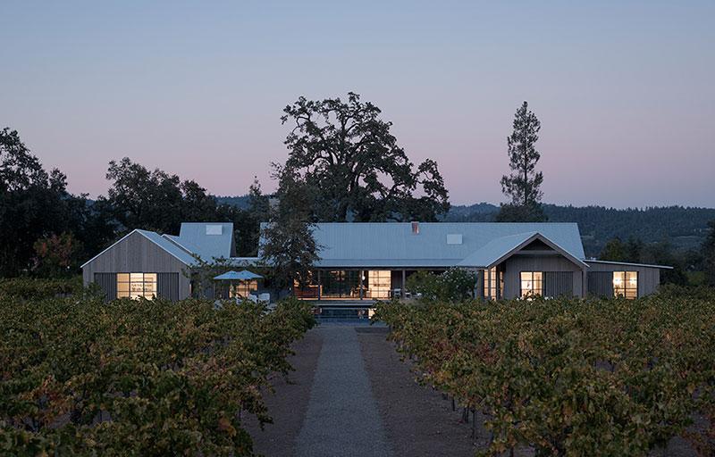 виноградник перед домом