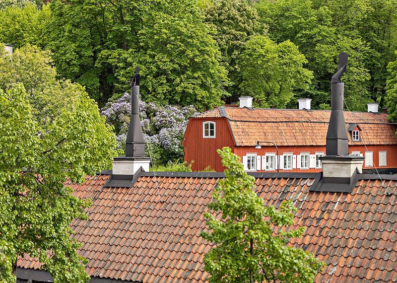 Живой интерьер в Швеции, наполненный светом и растениями (65 кв. м)