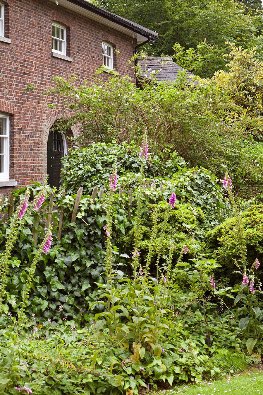 Прекрасный чёрно-белый интерьер лондонского таунхауса с садом