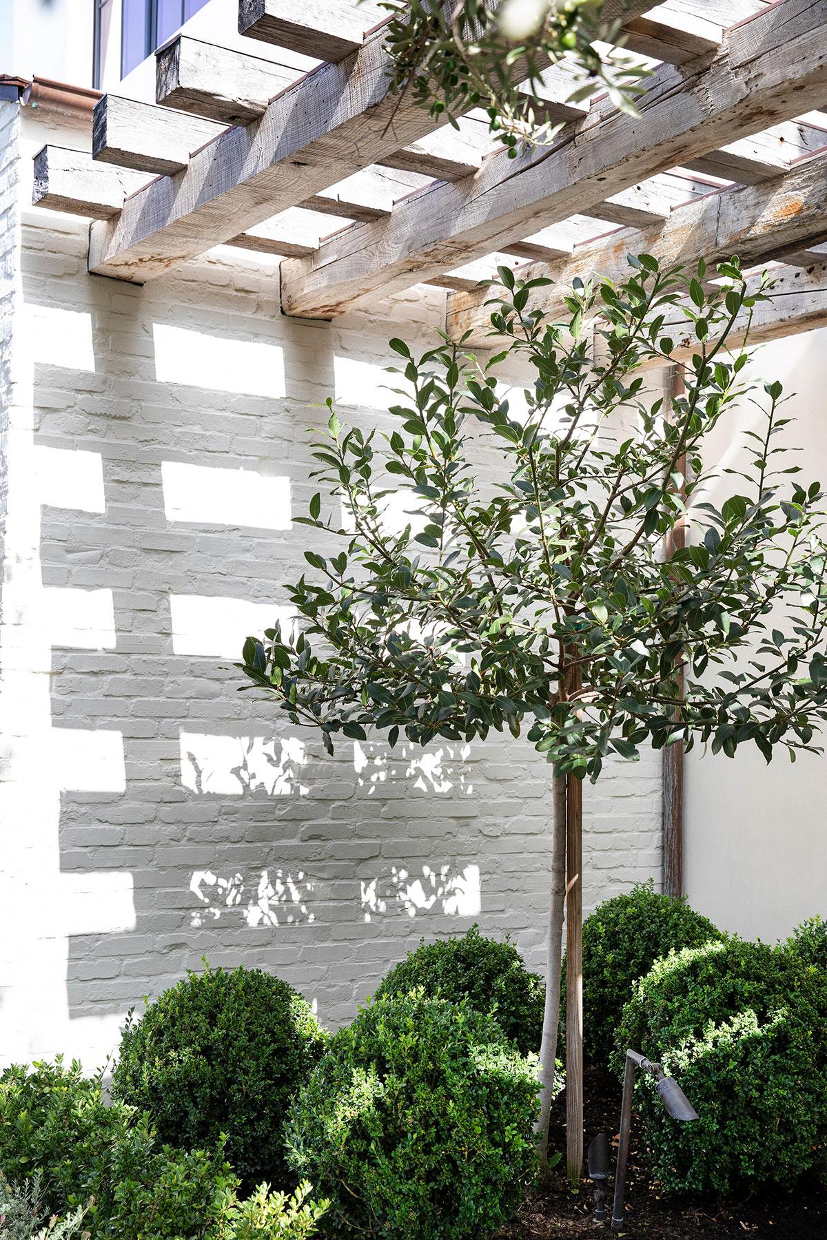 Светлый современный дом с обилием натурального дерева в Калифорнии