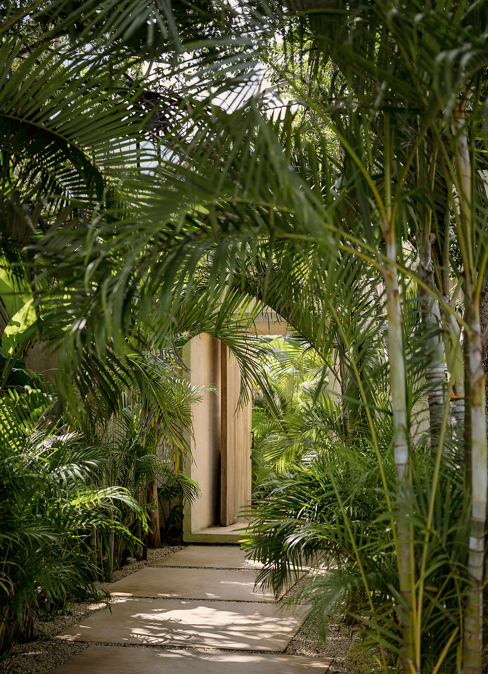 Тёплые и стильные натуральные интерьеры виллы в окружении пальм в Мексике